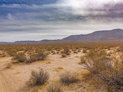 Johnson Valley Land Adjacent To Blm : Landers : San Bernardino County : California