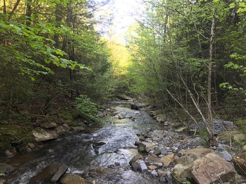 227.84 Acres Beautiful Wooded Mtn : Dayton : Rhea County : Tennessee