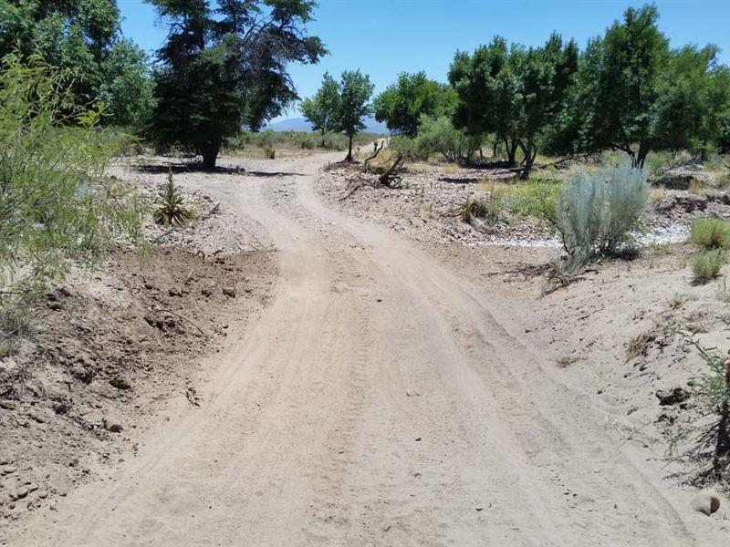 Turkey Creek, Med Cannabis Approved : Sunizona : Cochise County : Arizona
