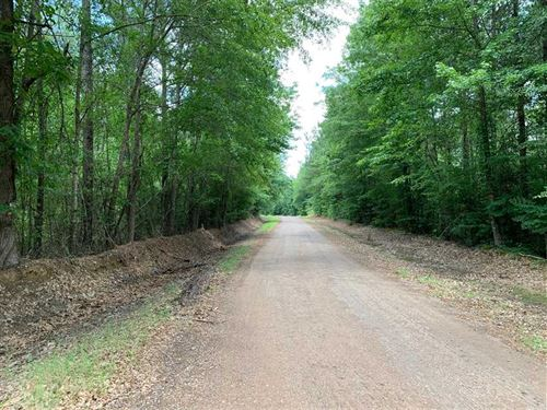 Denim Tract, Jackson Parish, 32 Ac : Jonesboro : Jackson Parish : Louisiana