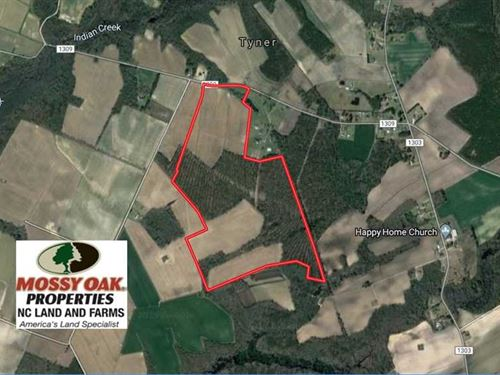 Reduced, 132 Acres of Farm And Tim : Tyner : Chowan County : North Carolina