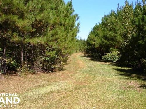 Sapps Road Hunting And Timber Inves : Carrollton : Pickens County : Alabama