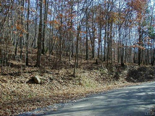 20 Acres Pilot Mountain Rd Smith : Moneta : Bedford County : Virginia