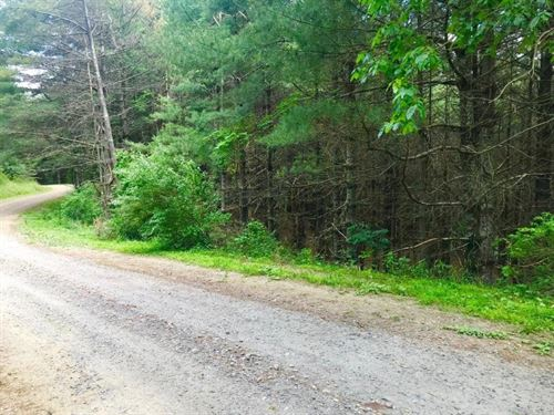 Creek Side Mountain Land For Sale : Riner : Floyd County : Virginia