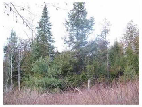 Timberland For Sale in Maine : Medway : Penobscot County : Maine