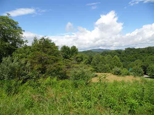 Gently Sloping Building Lot New : Piney Creek : Alleghany County : North Carolina