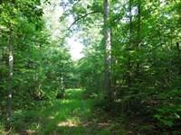 Affordable Hunting Tract : Littleton : Halifax County : North Carolina
