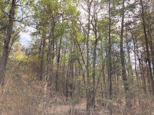 10 Acres Cr 3132 : Mauriceville : Newton County : Texas