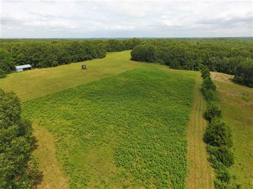 Excellent Hunting Property Near Hu : Humansville : Cedar County : Missouri