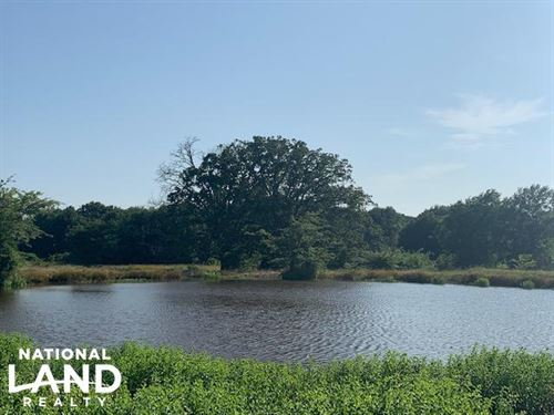 11.3 ac in Eustace Isd, Pond : Eustace : Henderson County : Texas