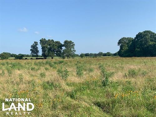 11.35 ac Pasture, Building Sit : Eustace : Henderson County : Texas