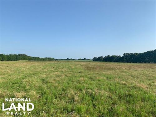 15.2 ac Pasture, Scattered Tree : Eustace : Henderson County : Texas