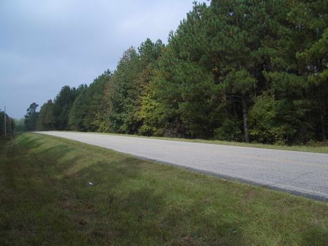 130.94 Acres : Union Point : Greene County : Georgia