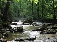 Prime 645 Acres With Creeks Galore : Moss : Clay County : Tennessee