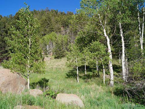 Land Mueller State Park Florissant : Florissant : Teller County : Colorado