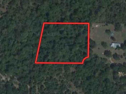 3.014 Acres In North Zulch, Tx : North Zulch : Madison County : Texas