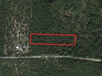 Secluded 2.86 Acres In Huntsville : Huntsville : Walker County : Texas