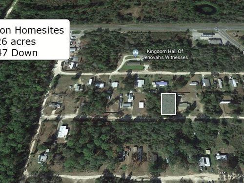 .26 Acre Lot Near National Forest : Silver Springs : Marion County : Florida