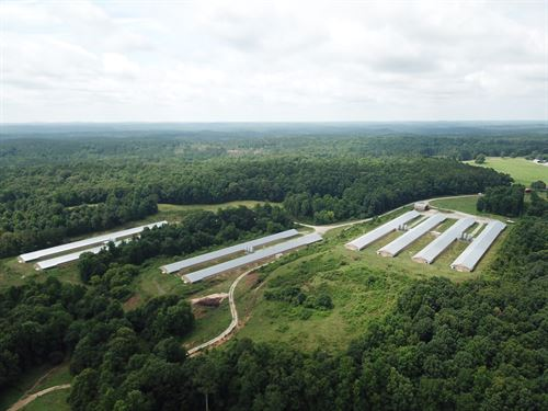 Oliver Farm-Broiler And Cattle Farm : New Site : Tallapoosa County : Alabama