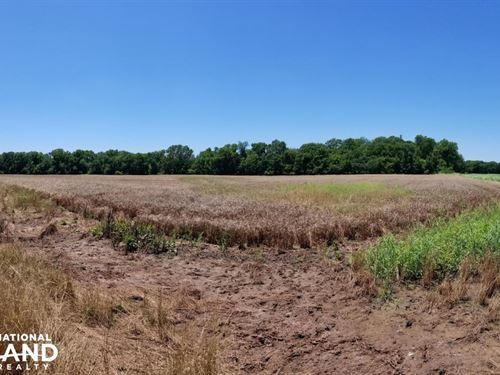 Hunter's Paradise : Yale : Payne County : Oklahoma