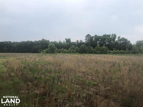 Bishopville Hunting And Farming Lan : Bishopville : Lee County : South Carolina