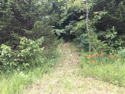 Land 5 Acres Deer Turkey Hunting : Pocahontas : Randolph County : Arkansas