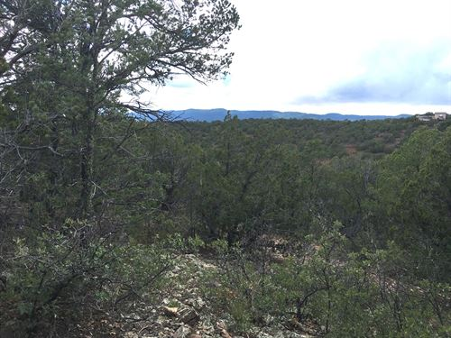 Wooded Lot Tijeras Canyon : Tijeras : Bernalillo County : New Mexico