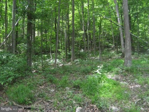 Land For Sale, Bloomery, WV : Bloomery : Hampshire County : West Virginia