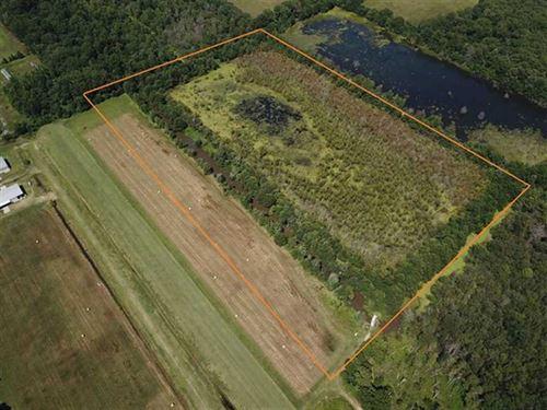 26 Acre Duck Hole & Homesite : Lonoke : Arkansas