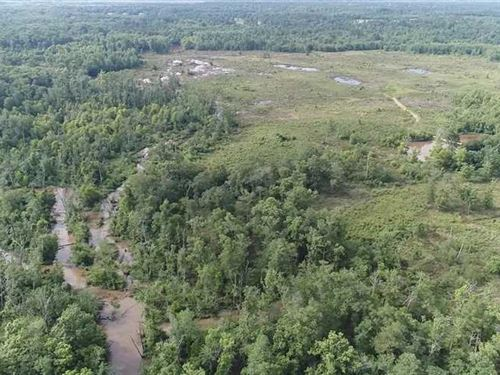 446.630 Acre Hunting And Recreatio : Reklaw : Cherokee County : Texas