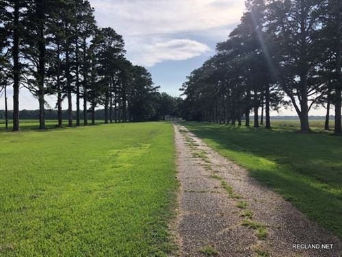 4 Ac, Land And Plantation Home : Fort Necessity : Franklin Parish : Louisiana