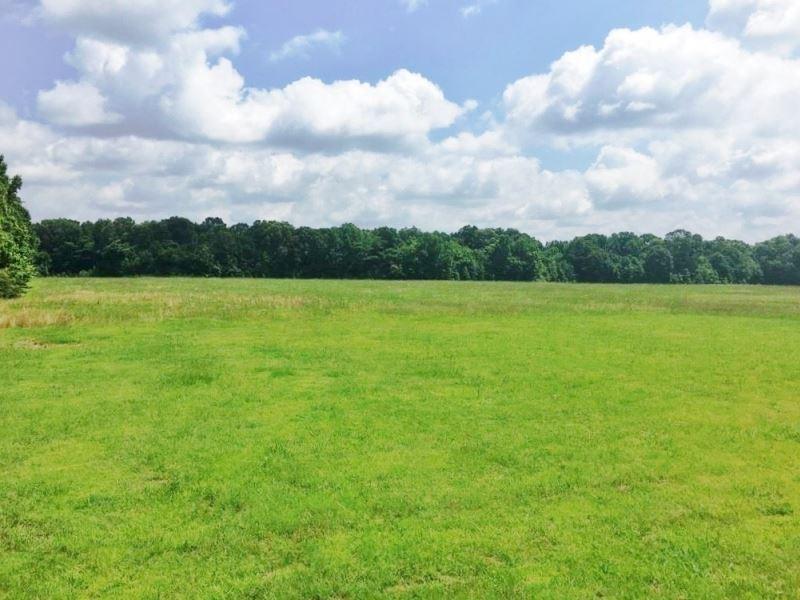 Hardwoods, Creek, Big Buck Land For : Pattison : Claiborne County : Mississippi