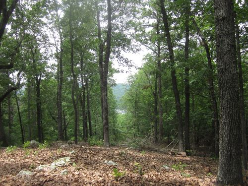 Land With Lake View in Arkansas : Flippin : Marion County : Arkansas