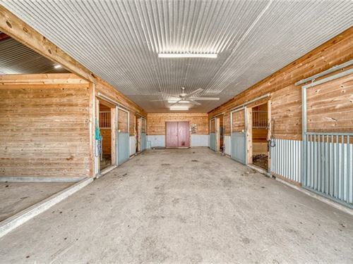 Great Horse Property : North Zulch : Madison County : Texas
