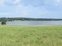 Owner Finance 27 Ac Lakefront/Pond : Brooksville : Hernando County : Florida