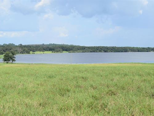 Owner Finance 17 Ac Lakefront/Pond : Brooksville : Hernando County : Florida