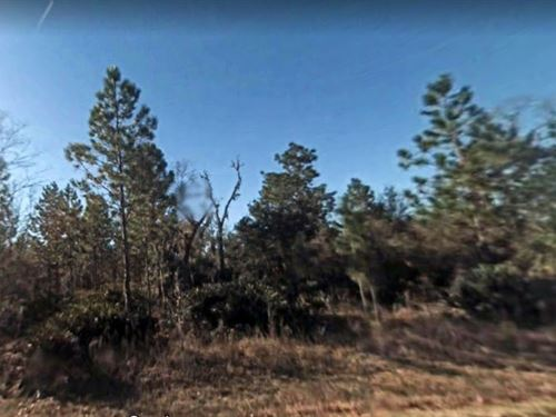 Citrus County, Fl $32,000 : Crystal River : Citrus County : Florida