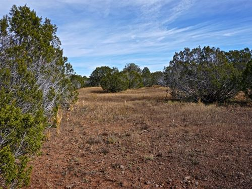Show Low Double Lot Land Deal : Show Low : Apache County : Arizona