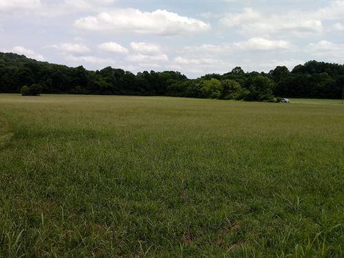 16 Acre Farm Located Franklin : Franklin : Williamson County : Tennessee
