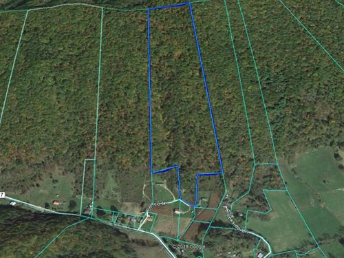 31 Acres Vacant Land : Chilhowie : Smyth County : Virginia