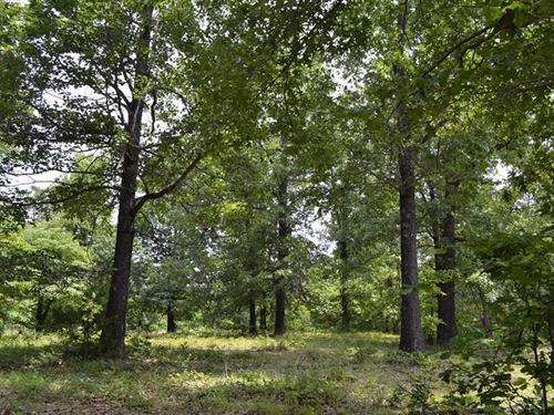 18.74 Acres Approximately 4 MI : Harriet : Searcy County : Arkansas