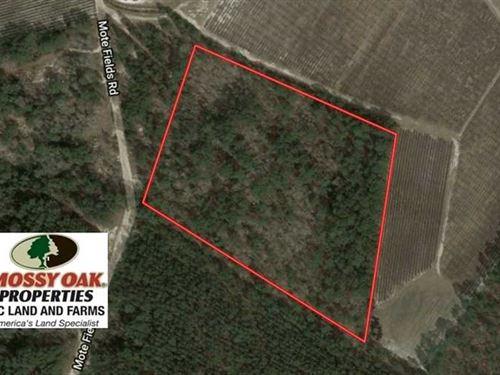 Under Contract, 10.5 Acres of Hun : Harrells : Bladen County : North Carolina