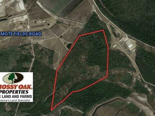 Under Contract, 101 Acres of Hunt : Harrells : Bladen County : North Carolina