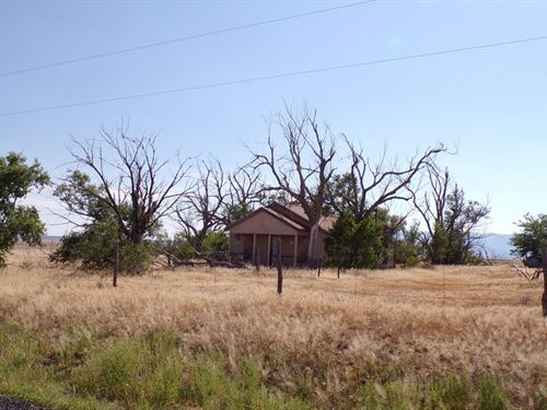 Central NM 5 Ac Estancia Valley Old : Estancia : Torrance County : New Mexico