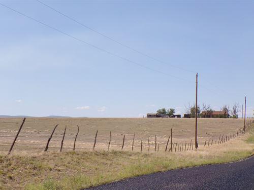 NM Estancia Valley Grazing Ranch : Estancia : Torrance County : New Mexico
