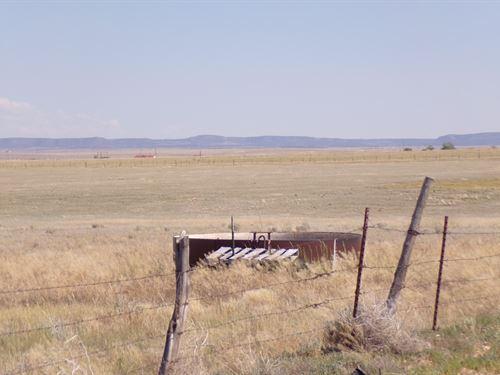 Grazing Pasture Land Mountainair NM : Estancia : Torrance County : New Mexico