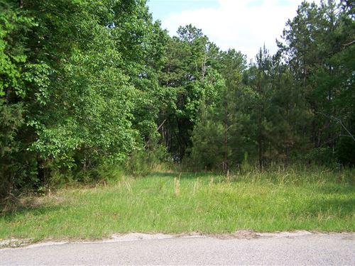 Building Lot in Winnsboro, SC : Winnsboro : Fairfield County : South Carolina