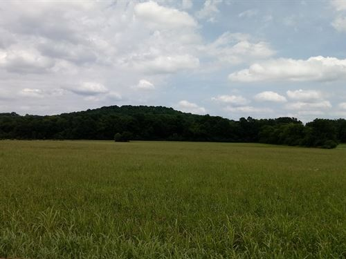 Farm Acreage & House, Located : Franklin : Williamson County : Tennessee