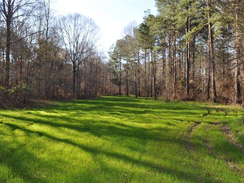 270 Acres, Hale County, Sawyerville : Sawyerville : Hale County : Alabama