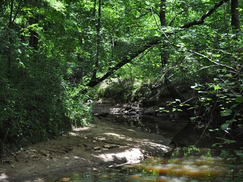 369 Acres, Hale County, Sawyerville : Sawyerville : Hale County : Alabama